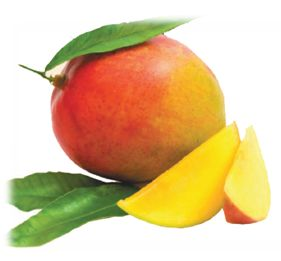 african-mango-picture
